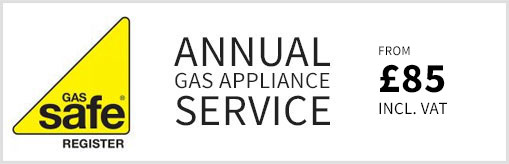 Annual Gas Appliance Service